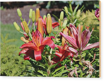 Day Lillies In The Garden Wood Print