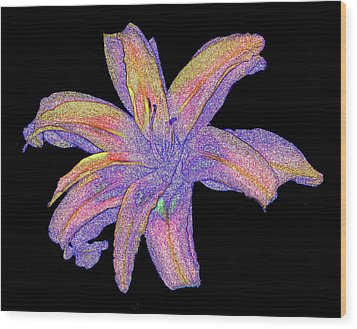 Wood Print featuring the photograph Day Lily #3 by Jim Whalen