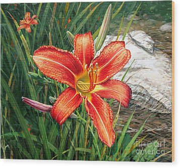 Day Lily Wood Print by Bob  George