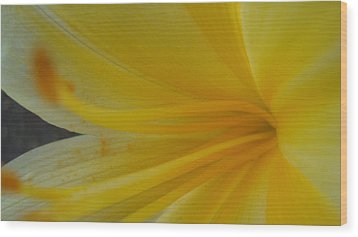 Day Lily Wood Print by Tamara Bettencourt
