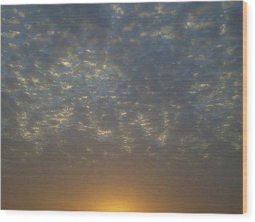 Daylight Awakening Wood Print by Heather Jack