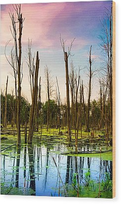 Daylight In The Swamp Wood Print by Lars Lentz