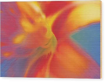 Wood Print featuring the digital art Daylily by David Davies