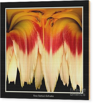 Daylily Flower Abstract 2 Wood Print by Rose Santuci-Sofranko