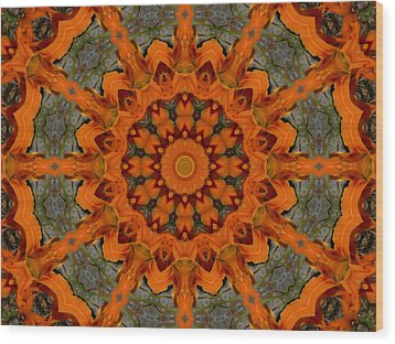 Wood Print featuring the photograph Daylily Orange Mandala by MM Anderson