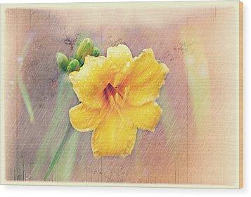 Daylily  Showers Wood Print