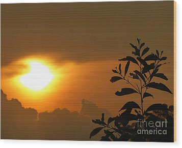 Day's Done My Sun Wood Print by Marguerita Tan