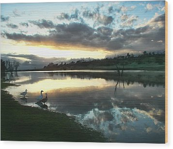 Days End At Horseshoe Lake  Wood Print