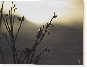 Days End Serenity Wood Print