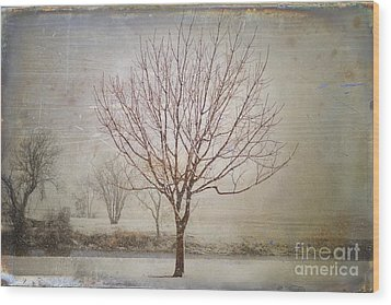 Days Of Old Wood Print by Betty LaRue