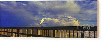 Wood Print featuring the photograph Daytona Beach Fl Bird Sun Glow Pier  by Tom Jelen