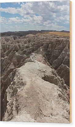 Dead End Trail In Badland National Park South Dakota Wood Print by Adam Long