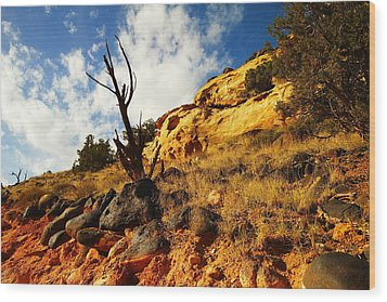 Dead Tree Against The Blue Sky Wood Print by Jeff Swan
