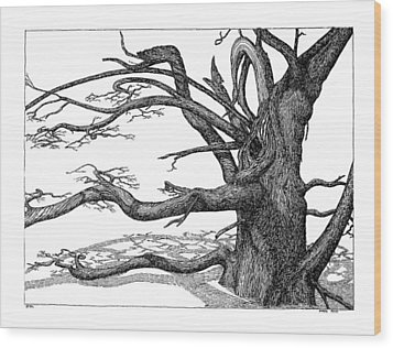 Wood Print featuring the drawing Dead Tree by Daniel Reed