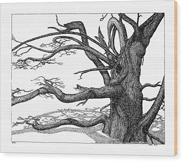 Dead Tree Wood Print by Daniel Reed