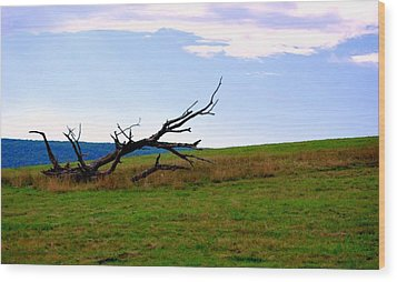 Wood Print featuring the photograph Dead Tree by Mary Beth Landis