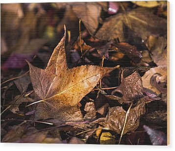 Death Of Autumn Wood Print by Mark Lucey