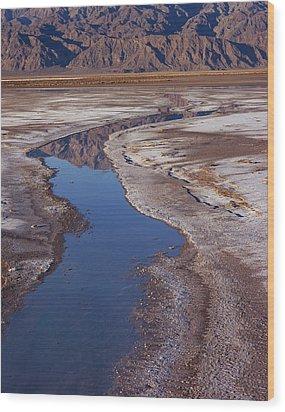 Death Valley Salt Stream 1 Wood Print