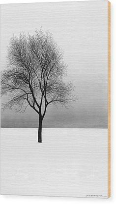 December 11 Wood Print by Doug Fluckiger