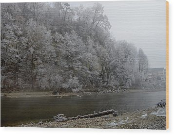 Wood Print featuring the photograph December Morning On The River by Felicia Tica