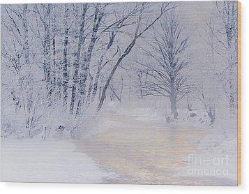 December Riverscape Wood Print by Alan L Graham