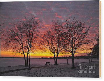 Wood Print featuring the photograph December Sunset by Terri Gostola
