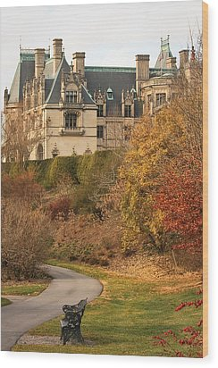 Wood Print featuring the photograph December Walk At The Biltmore by Tammy Schneider