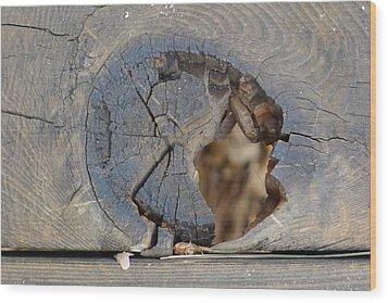 Deck Wood Print by Nora Boghossian
