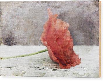 Decor Poppy Red Wood Print by Priska Wettstein