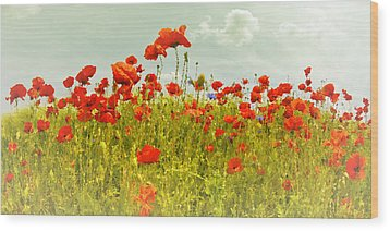 Decorative-art Field Of Red Poppies Wood Print by Melanie Viola