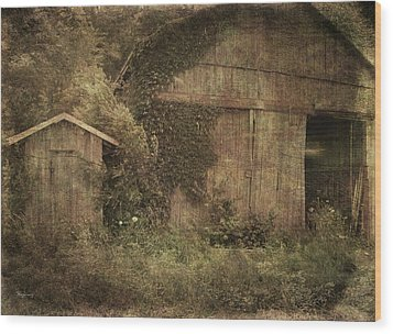 Decrepitude Wood Print by Cynthia Lassiter