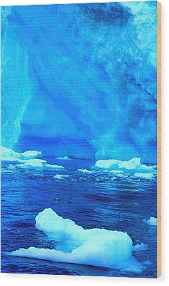 Wood Print featuring the photograph Deep Blue Iceberg by Amanda Stadther
