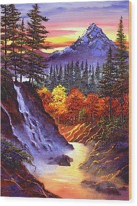 Deep Canyon Falls Wood Print by David Lloyd Glover
