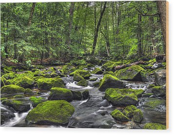 Deep Green River Wood Print