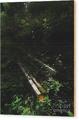 Deep In The Woods Wood Print