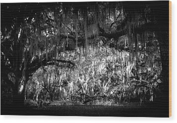 Deep In The Woods Wood Print by Christy Usilton