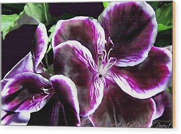 Deep Purple Vibrant Flower Macro Wood Print by Danielle  Parent