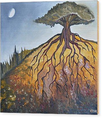 Deep Roots Wood Print by Cedar Lee
