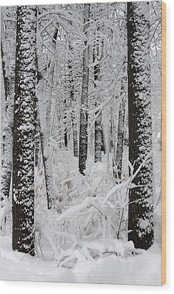 Deep Snow In The Forest Wood Print by Lynn-Marie Gildersleeve