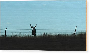 Wood Print featuring the photograph Ohhhh Deer by Shirley Heier