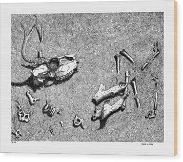 Deer Bones Wood Print by Daniel Reed