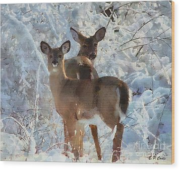 Deer In The Snow Wood Print by Elizabeth Coats