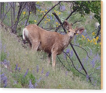 Wood Print featuring the photograph Deer In Wildflowers by Athena Mckinzie