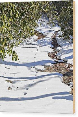 Deer Trail Wood Print by Susan Leggett