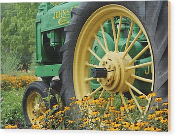 Wood Print featuring the photograph Deere 2 by Lynn Sprowl
