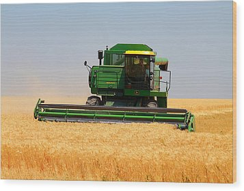Deere Field Wood Print by Jason Drake
