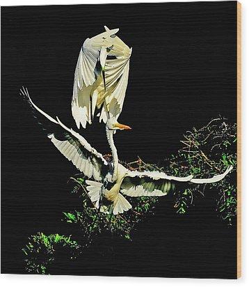 Defending The Nest Wood Print by Stuart Harrison