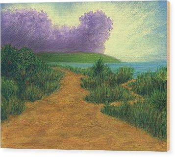 Del Mar Trails 03 Wood Print