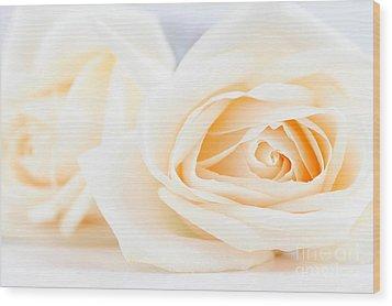 Delicate Beige Roses Wood Print by Elena Elisseeva