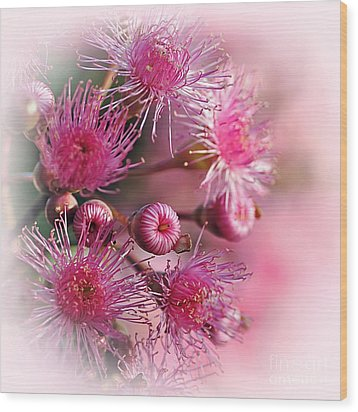 Delicate Buds And Blossoms Wood Print by Kaye Menner